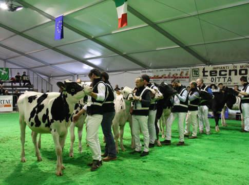 Redditività del latte: i consigli degli allevatori a Bovimac 2019