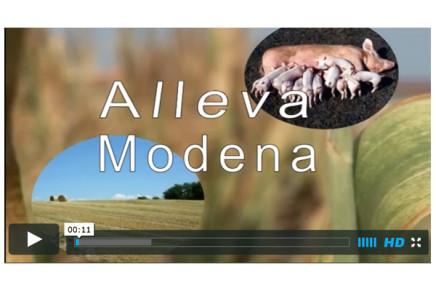 Alleva Modena (Confagricoltura) / IL VIDEO
