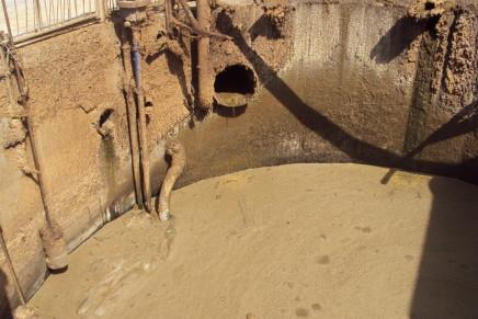 Le Linee guida Mipaaf contro le emissioni agricole e zootecniche